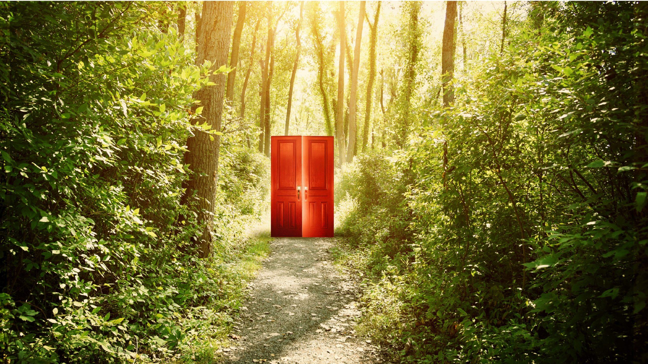 Forest Door Banner